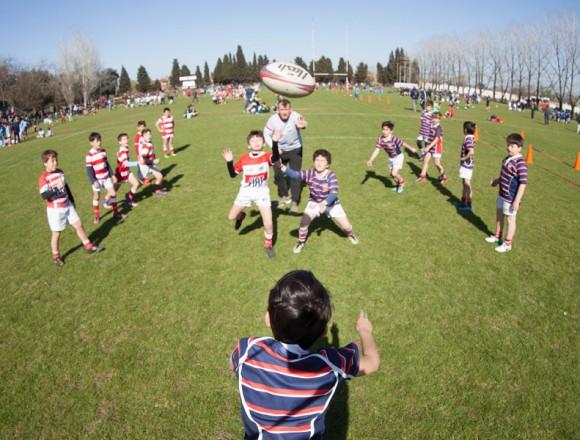 Curso para entrenadores de Rugby Infantil