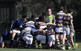 Fixtures de las Divisiones Juveniles