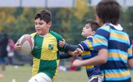 Reunion de Coordinadores de Rugby Infantil