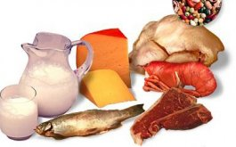 Importancia de las Proteinas