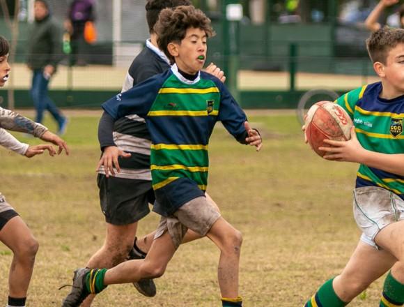Fecha URBA de las diferentes categorías de Rugby Infantil